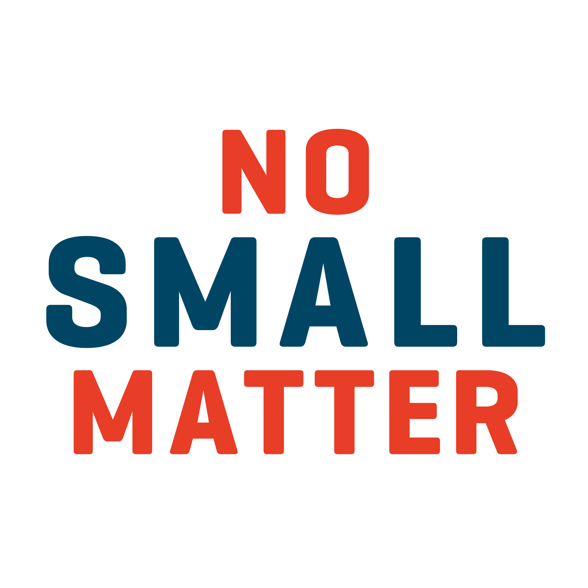 No Small Matter Logo