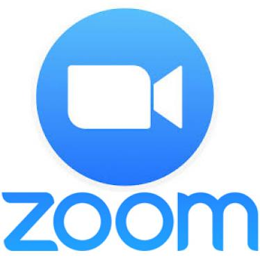 icon of a blue circle with white camera and the word zoom in blue