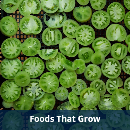 Foods That Grow