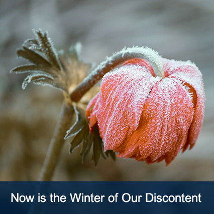 Now is the Winter of Our Discontent - January 2020