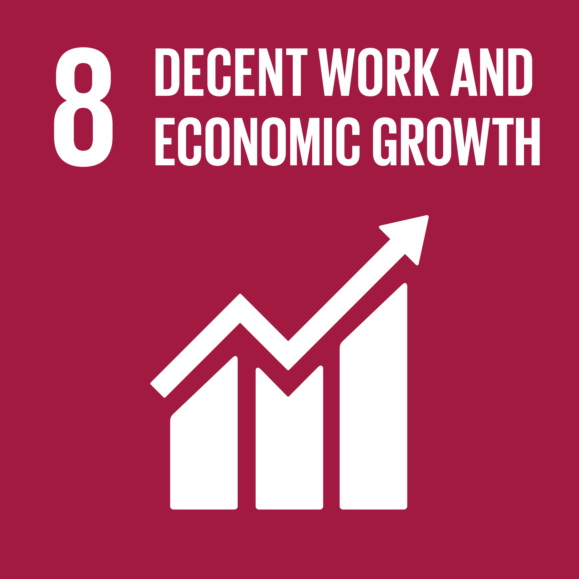 Sustainable Development Goal 8: Economy and Work