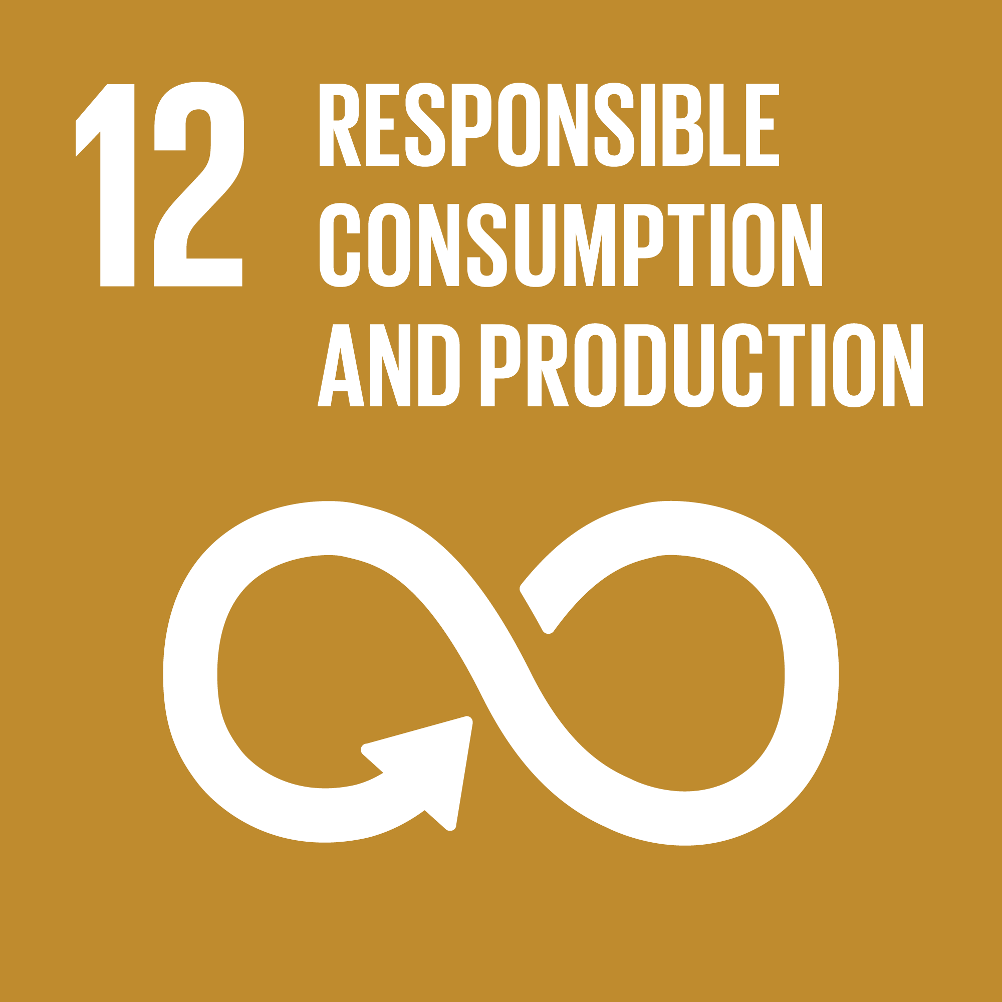 Sustainable Development Goal 12: Waste and Recycling