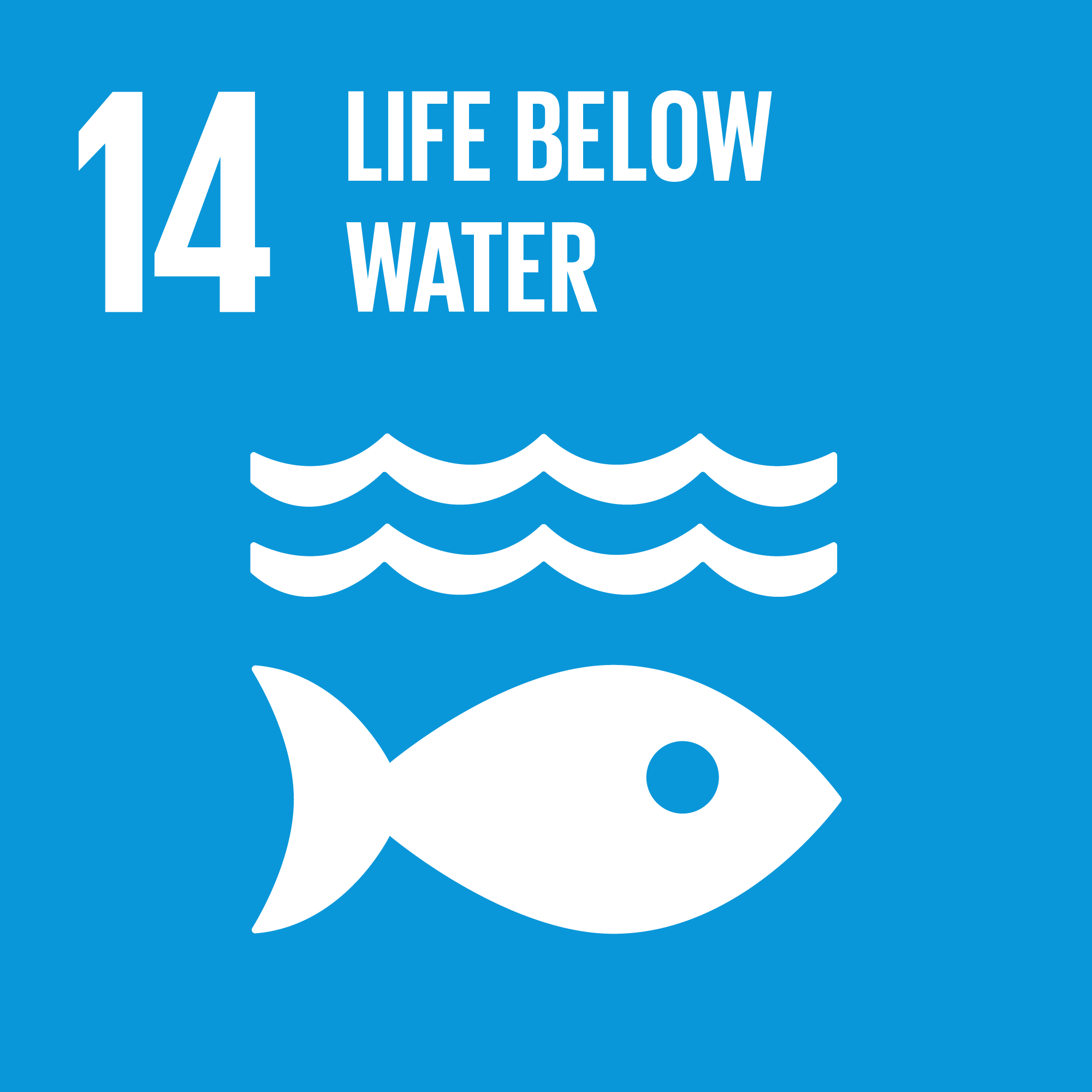 Sustainable Development Goal 14: Oceans