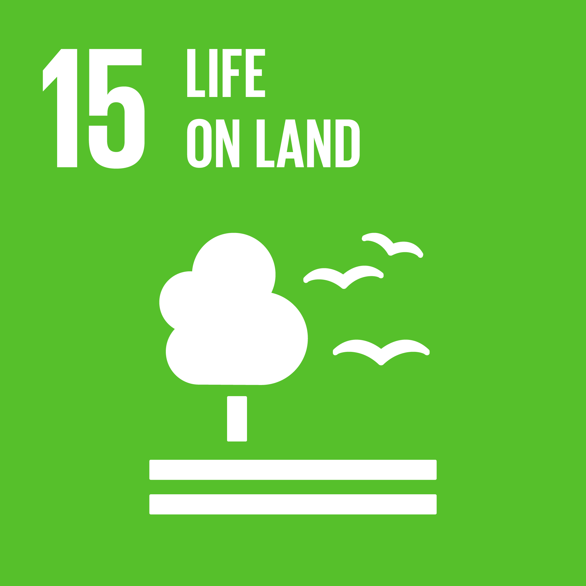 Sustainable Development Goal 15: Biodiversity / Life on land