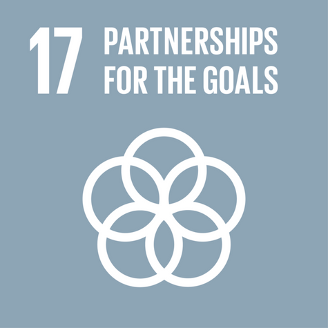 Sustainable Development Goal 17: Partnerships