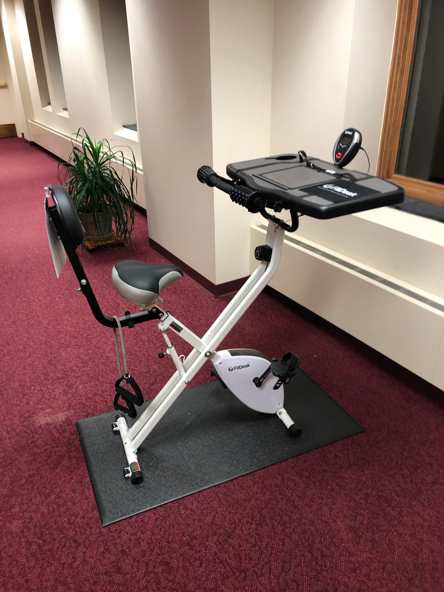 Fit Desk exercise bike located on the second floor adjacent to the Archives