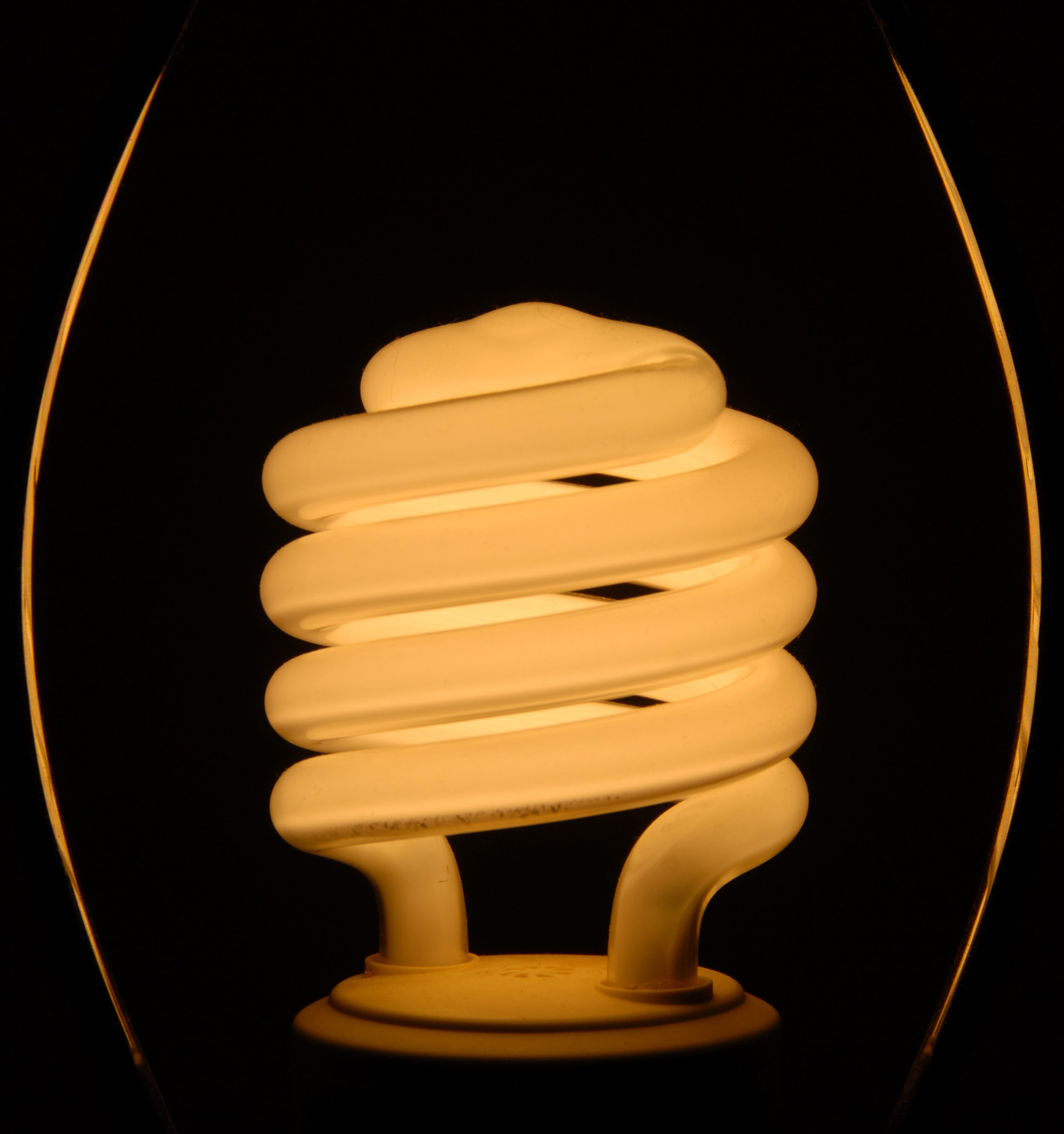 Lit compact fluorescent bulb photograph used for decorative purpose only