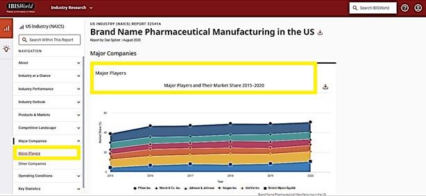 Brand Name Pharmaceuticals Report