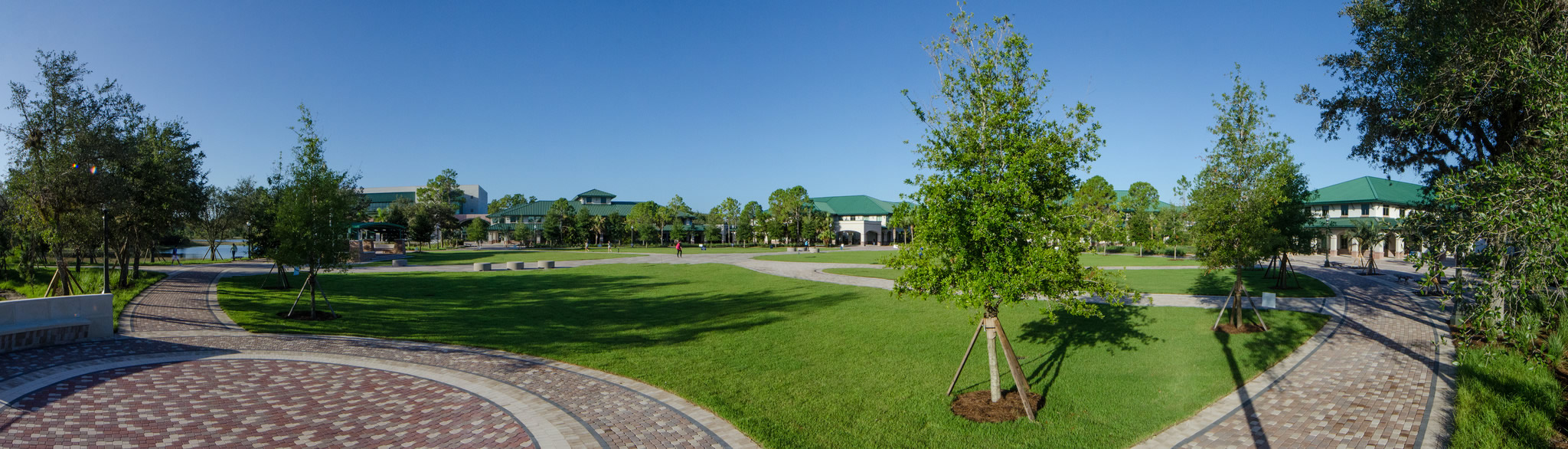 FGCU Landscape