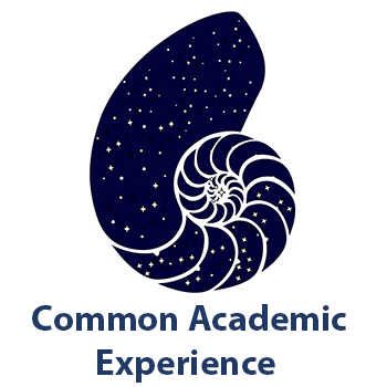 Common Academic Experience icon